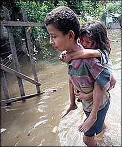 La FAO reconoce la  existencia de unos 1 000 millones de hambrientos en todo el mundo