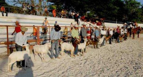 Feria Agropecuaria en Bayamo